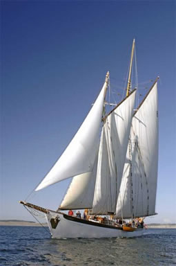 schooner_zodiac_under_sail