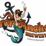 drop_anchor_logo