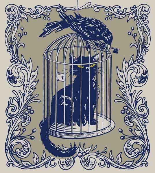 black raven kitty kat