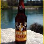 no-li-brass-monkey