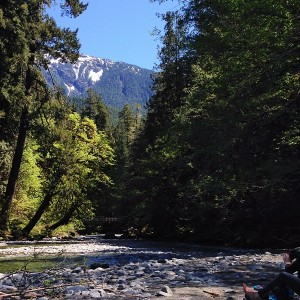 Skokomish river on the Staircase hike in the Olympic National park