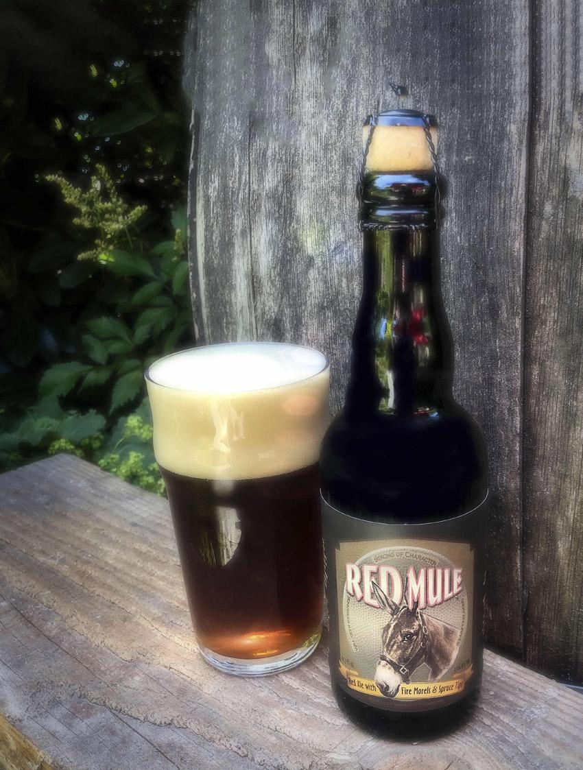 Red-Mule-Beer-(1)