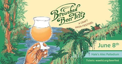 brewshed-beerfest-2019