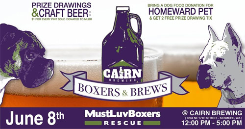 boxers-and-brews-2019