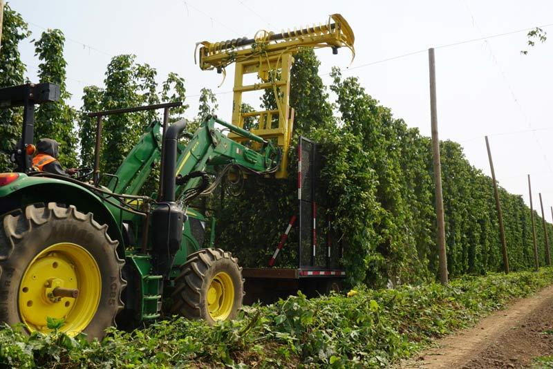 Images copyright Crosby Hop Farm.