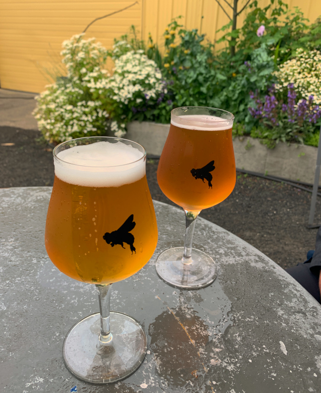 Beer garden at Propolis Brewing in Port Townsend, WA.